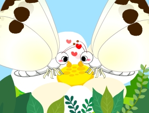 나비가 되고 싶어 2