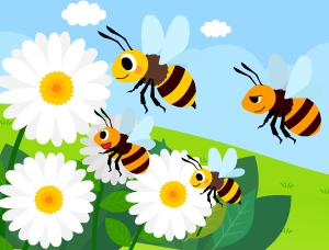 꿀벌 이야기