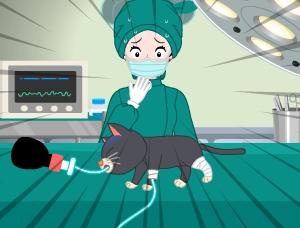 수의사 프린세스 2